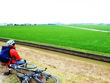 田んぼの中に魚道が設置される須原・せせらぎの郷