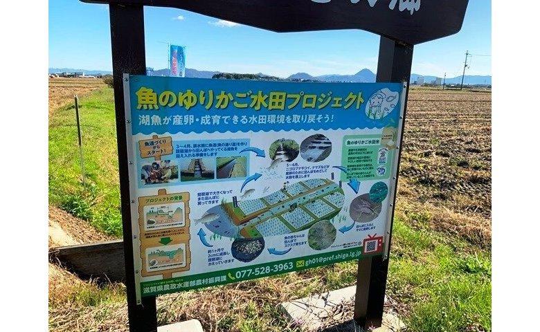 魚のゆりかご水田プロジェクト