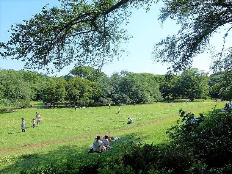 砧公園ファミリーパーク